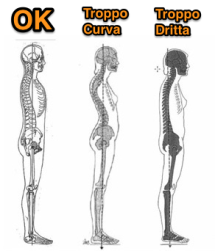 Tre-posture-tipo-AeR